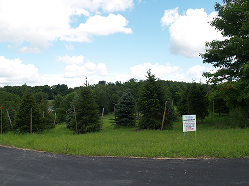 View of the compressor site from Jacobs Road.